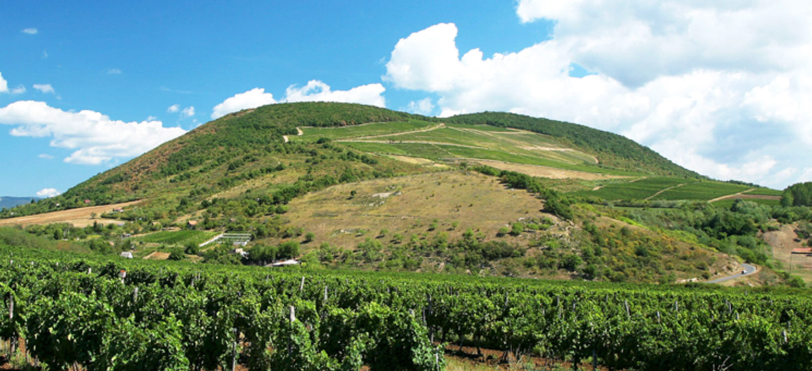 MOV – Maďarské ochutnávání vín